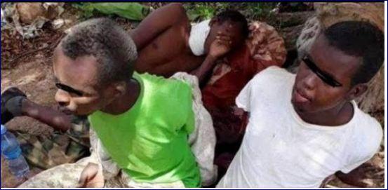 ICRC Oo Sheegtay In 17 Maxbuus Oo Somaliland Iyo Puntland Kala Qabsadeen Ay Gaadheen Guryahoodii