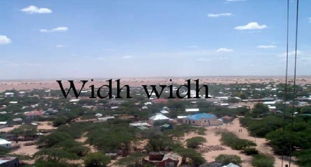 Somaliland: Tirada Dad Carruur u Badan Oo Xanuun Ugu Geeriyooday Widh-Widh